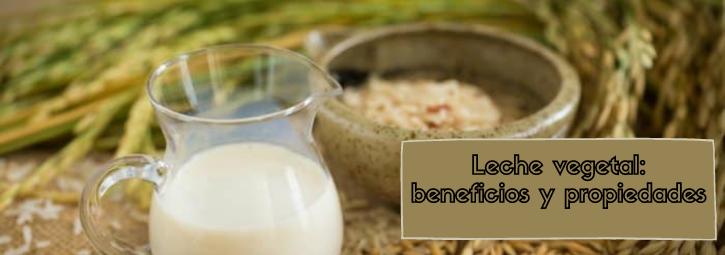 Leche vegetal: beneficios y propiedades